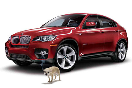 Bmw X7 Automotive Todays