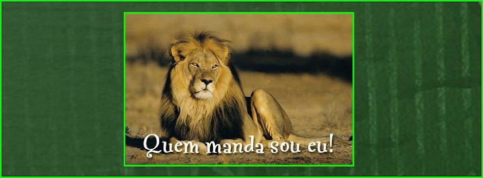 Sporting-AQUI!...
