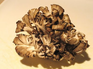 Polysaccharide in Maitake mushroom is a very large carbohydrate molecule.