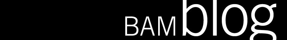 BAM blog