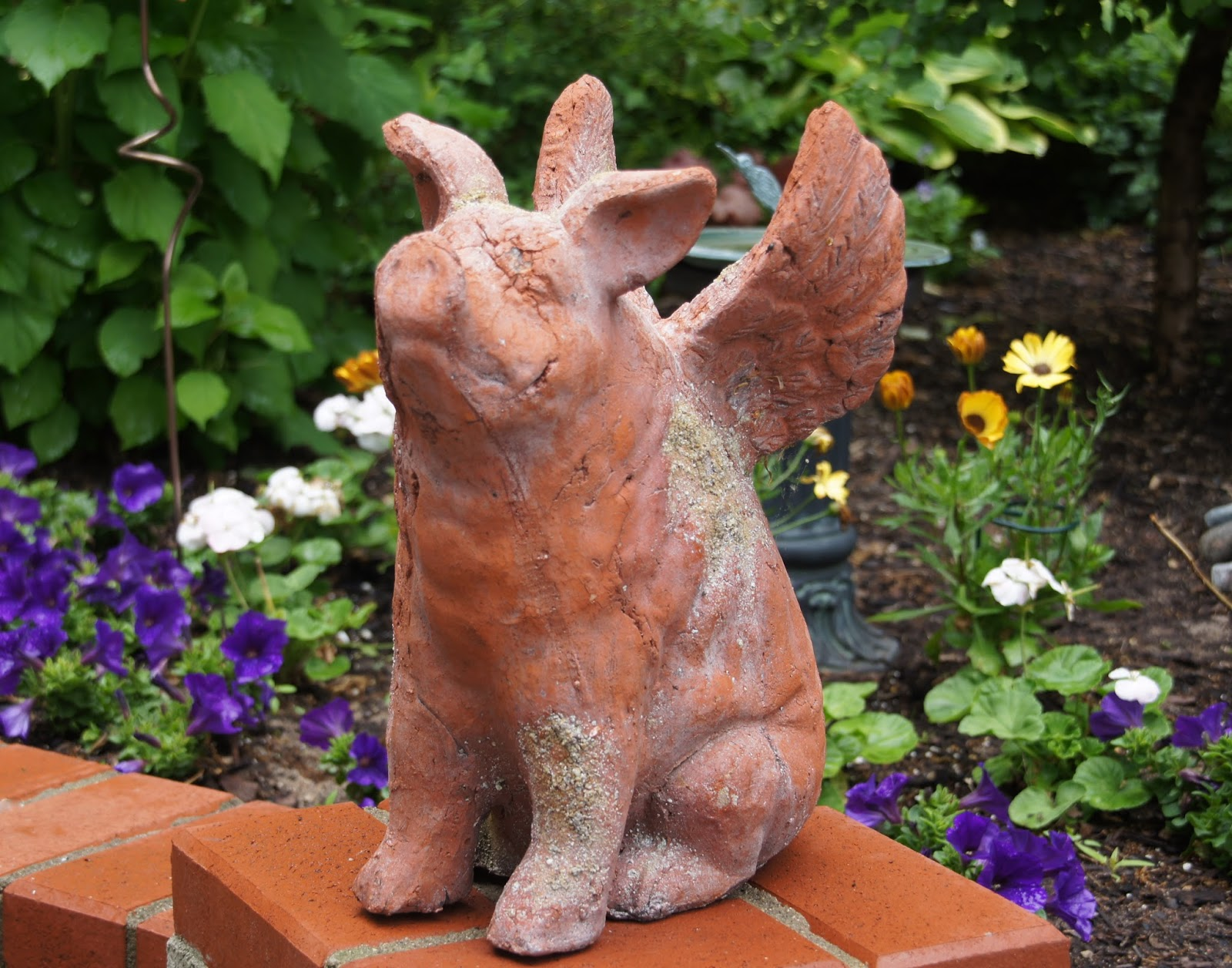 Pig lawn ornament - I Just Can T Help But Find Humor In The Term When Pigs Fly And I Love The Optimism That When Pigs Fly Anything Can Happen