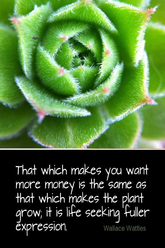 visual quote - image quotation for MONEY - That which makes you want more money is the same as that which makes the plant grow; it is life seeking fuller expression. - Wallace Wattles