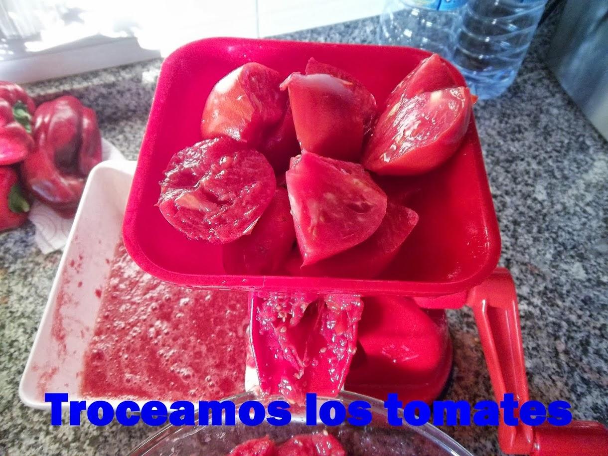 TOMATES EN CONSERVA 3