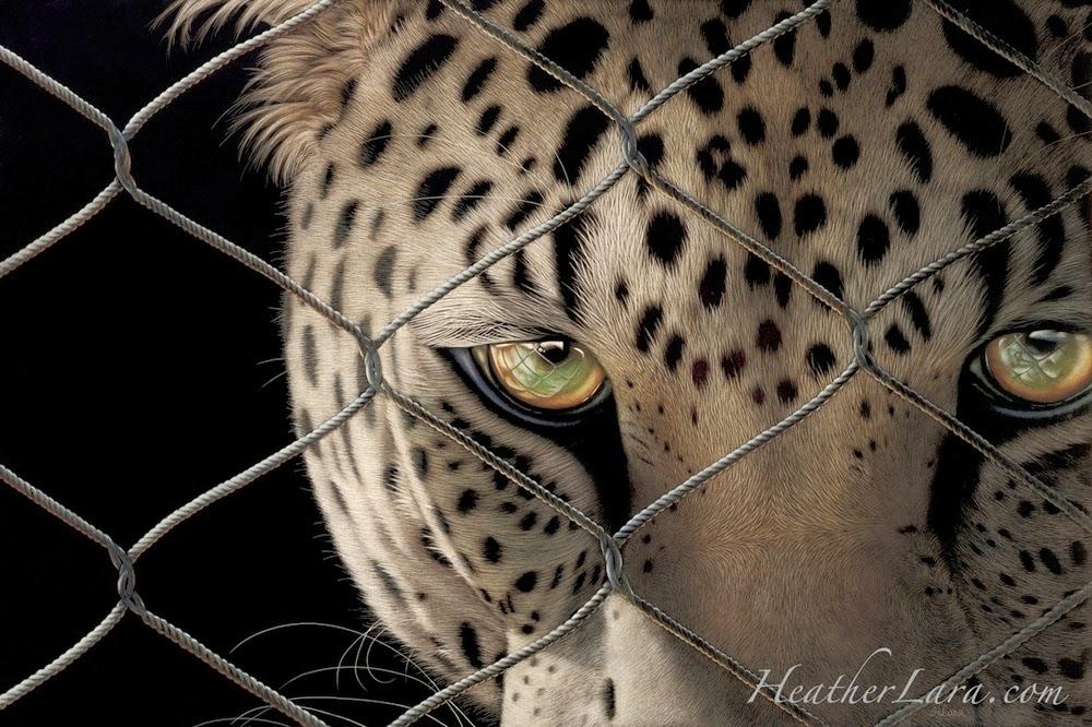 08-Leopard-Heather-Lara-Hyper-realistic-Animal-Scratchboard-Drawings-Wildlife-www-designstack-co