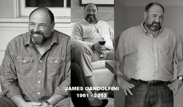 James Gandolfini Enough Said stills - RIP