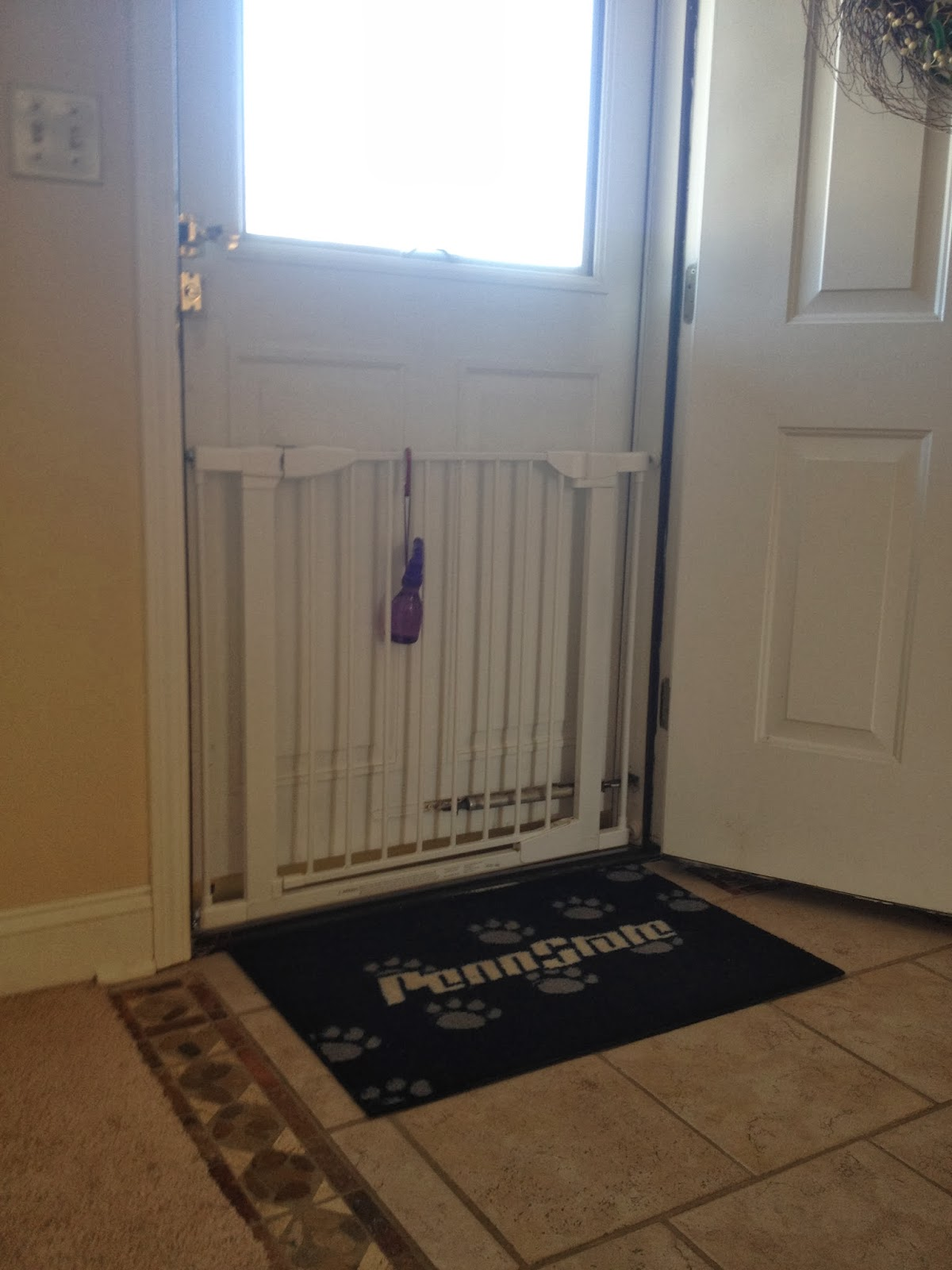 Basenji Rescue And Transport Blog Securing The Front Door