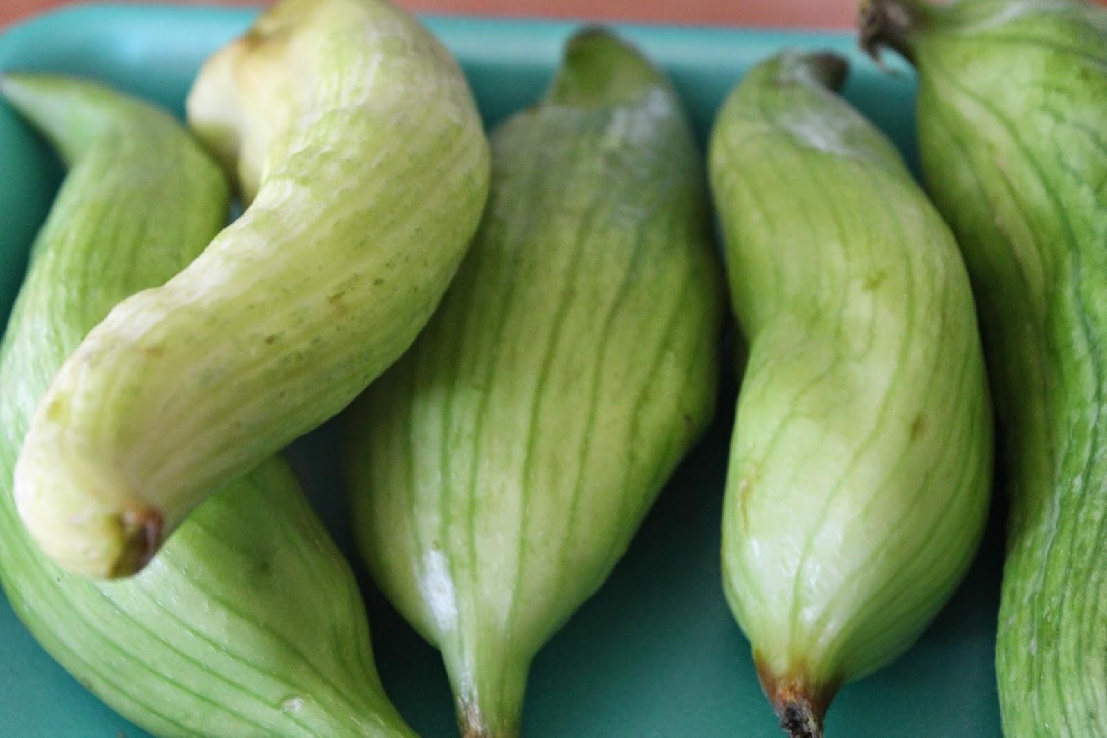 Gastrolamas: Achogchas rellenas de carne picada