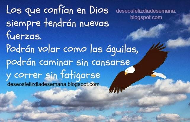 Los que confían en Dios tendrán nuevas fuerzas. Volarán como águila, versículos bíblia, citas bíblicas, versos, Biblia en imágenes, frases de aliento, palabras de aliento.