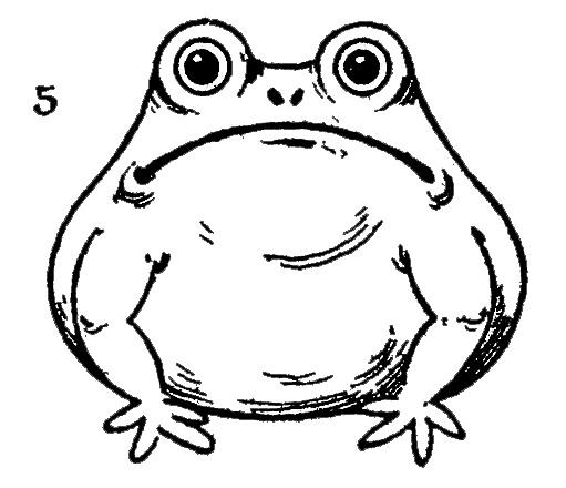 Симпатичная лягушка - картинка 9634