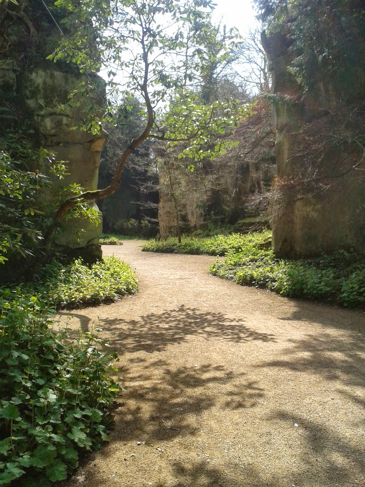 Belsay Hall, Castle and Gardens, Northumberland. Quarry Garden