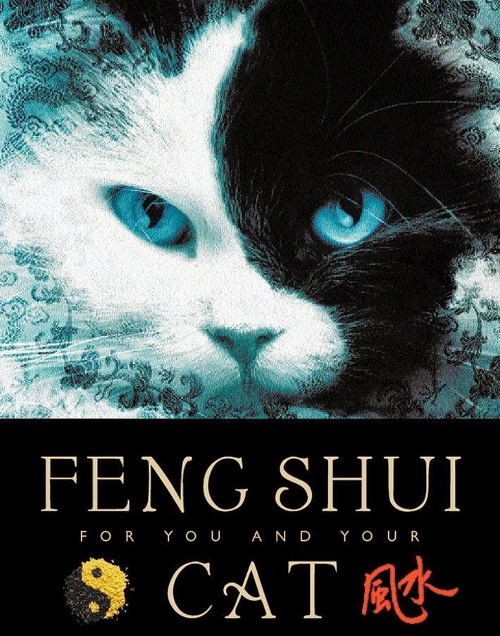 kate FENG SHUI
