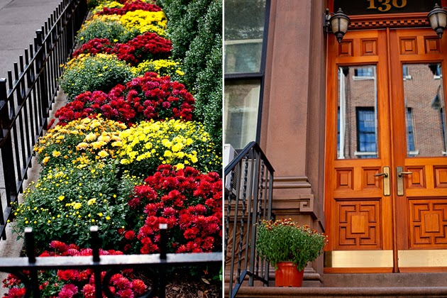 fall on the upper west side, nyc