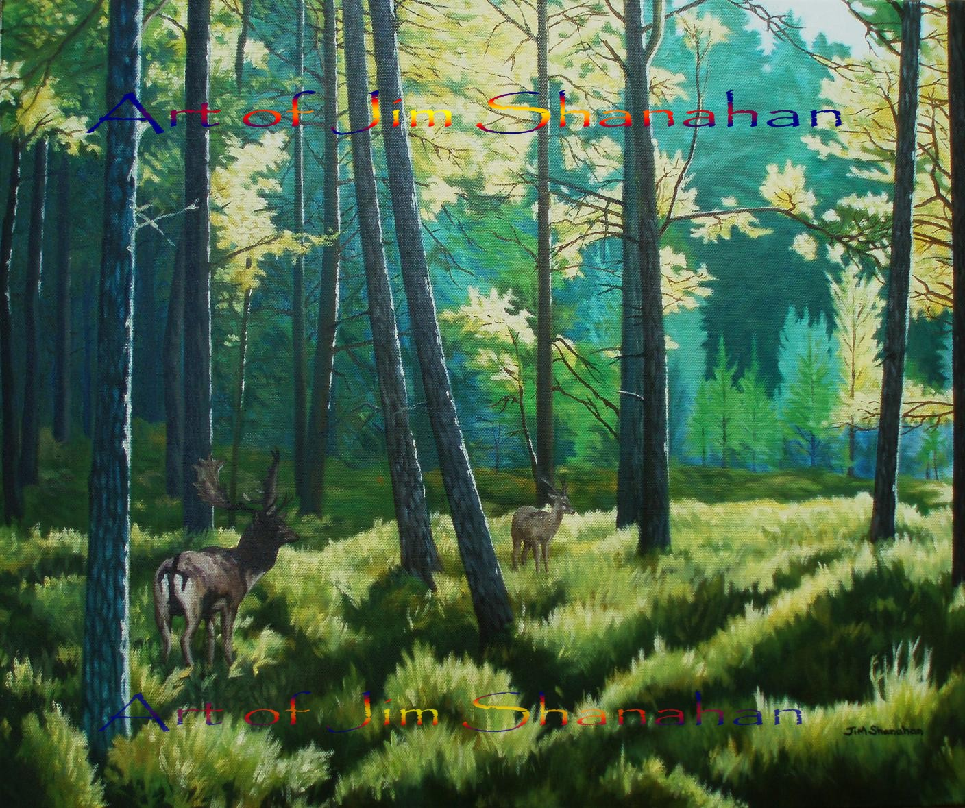 Deer in Pine Forest -- Reserved - Available as Canvas print same size Euro 180