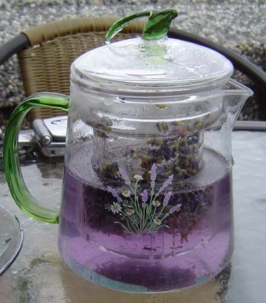 natural health tips with lavender tea