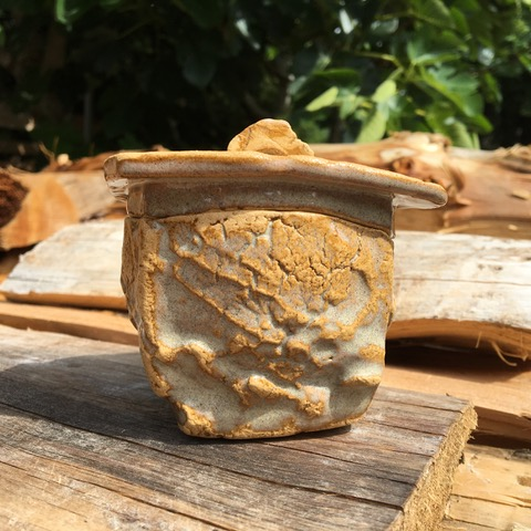 Jar, Beachcomber Impressions