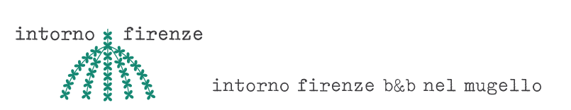 Intorno Firenze b&b e la Terrazza affittacamere - ita