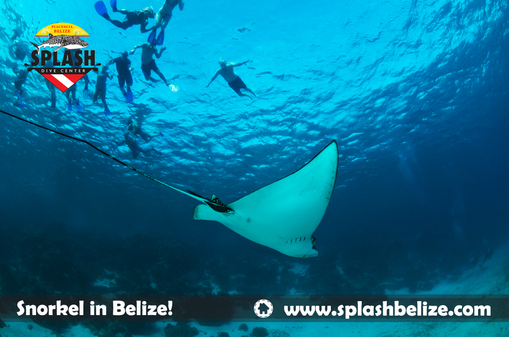 Belize winter vacations summer in december for Tropical getaways in december