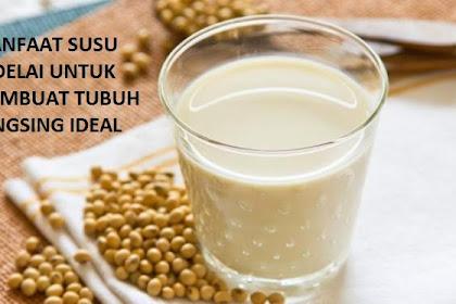 Manfaat Susu Kedelai Untuk Membuat Tubuh Langsing Ideal