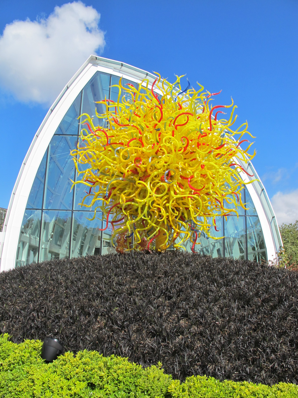 Christie Chase 520 Chihuly Garden Of Glass