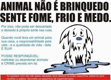 Animal não é brinquedo...