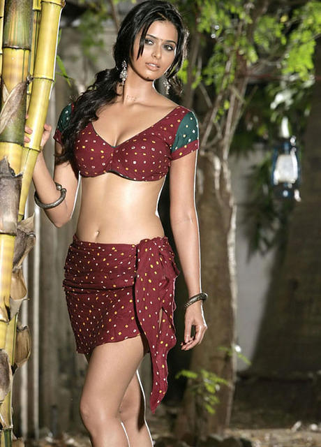 meenakshi dixit actress hot photos