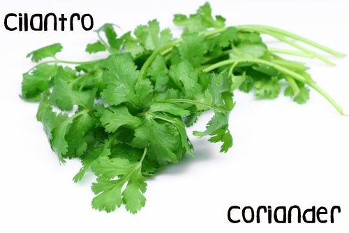 Roots N 39 Greens Vegan Recipes Wellness Health Black