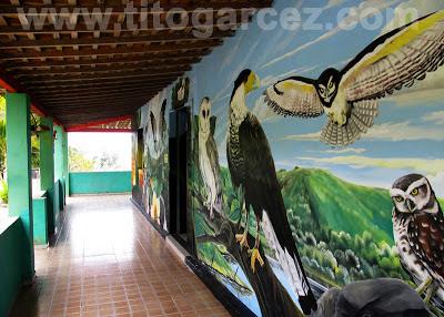 Varanda da casa principal do Parque dos Falcões, na Serra de Itabaiana, em Sergipe