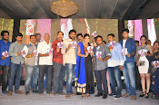 Kiraak audio release function photos-thumbnail-4