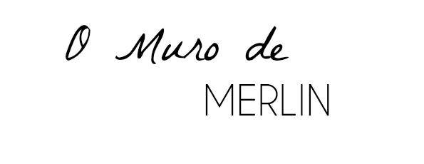 O Muro de Merlin - Por Beatriz Merlin