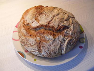 no knead bread pane senza impasto