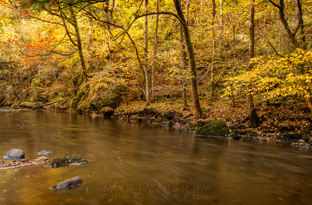 Golden autumn colours along the Afon Mellte in South Wales by Martyn Ferry Photography
