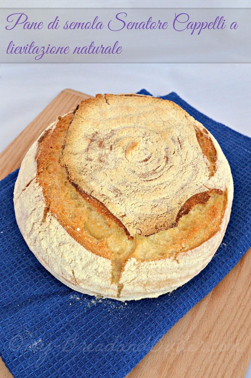 pane di semola con licoli