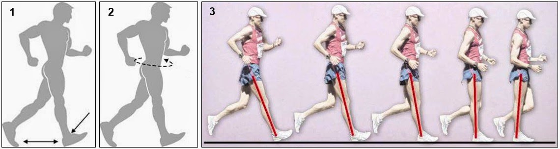 Race walking hips