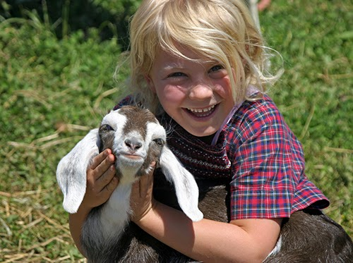 young girl with baby goat