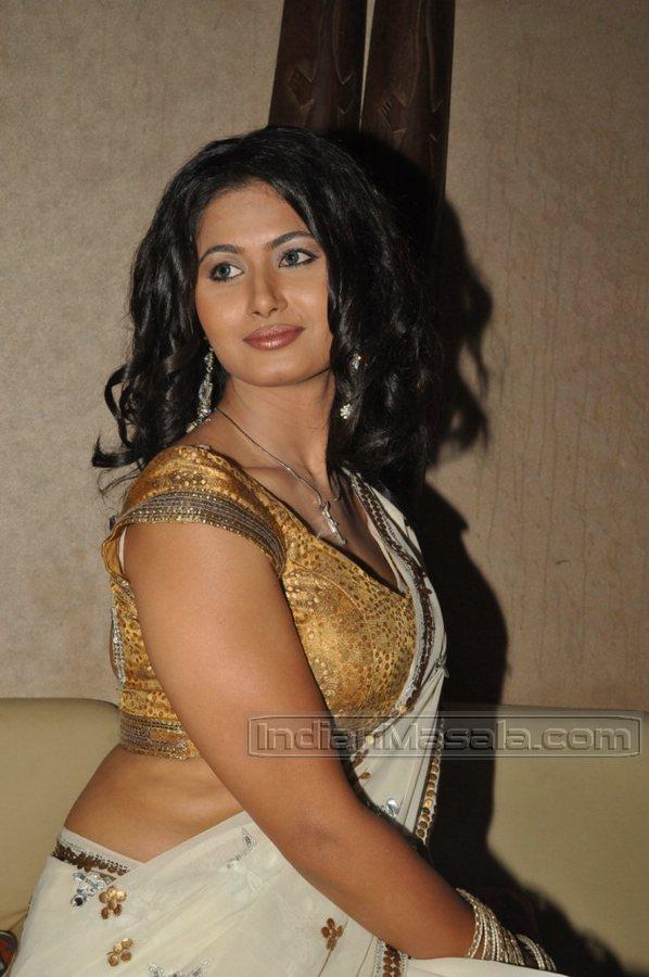 ACTRESS MASALA: Divya Dwivedi Shefali Sharma Hot
