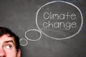 Pengelolaan Dana Iklim di Indonesia Dipertanyakan