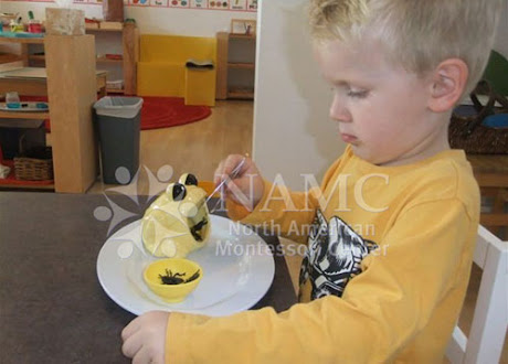 namc adding variety montessori practical life boy using tongs