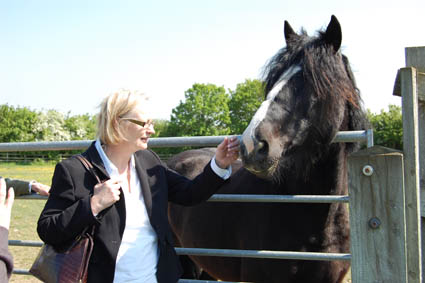 Julie Girling MEP with a horse (Photo: Julie Girling MEP website)