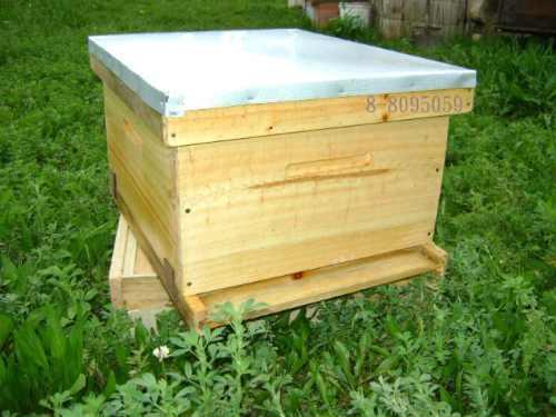 venta de material apicola en Guerrero