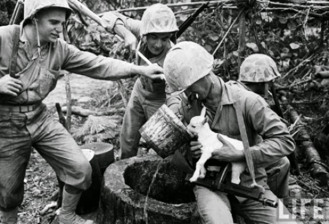#8. The soldiers in the Battle of Okinawa took time to care for a baby goat. - 24 Happy Animal Photos Made Possible By The People Who Saved Them.