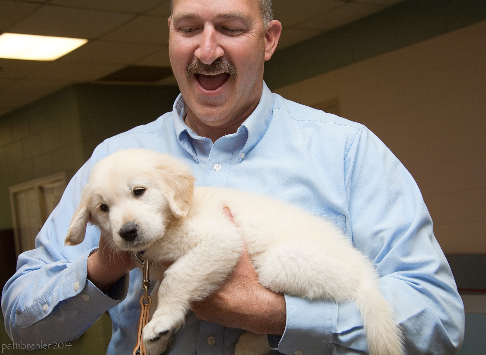 A man in a light blue shirt is holding the fuzzy puppy in his arms. He is looking down at the puppy and has a surprised smile on his face. He has a mustache.  The puppy is cradled in his left arm and his right hand is petting the puppy's neck.