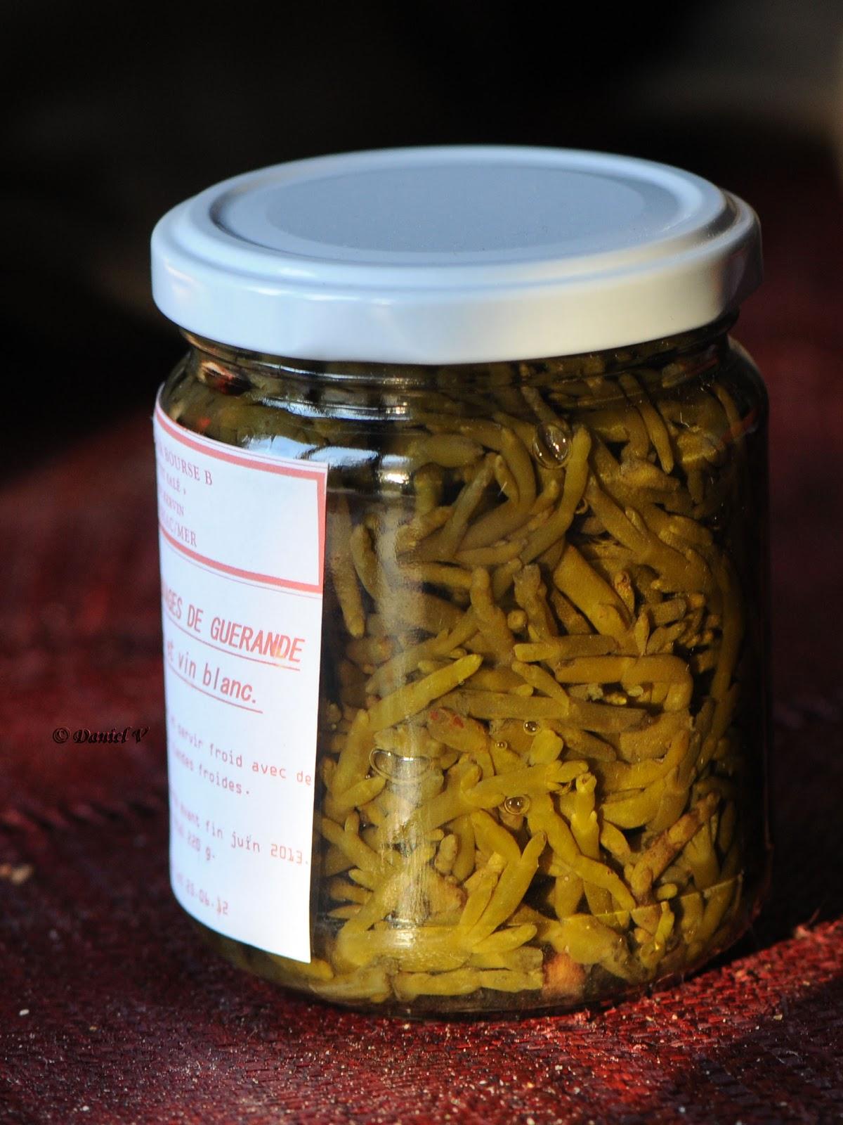 Macrophoto plaisir passion la salicorne d 39 europe - Cuisiner les salicornes ...