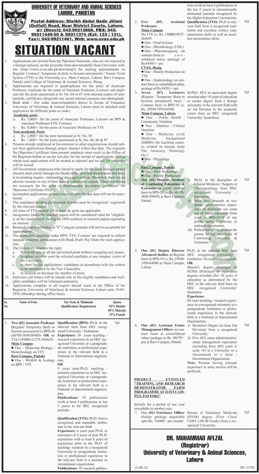 University of Veterinary And Animal Sciences Lahore Jobs