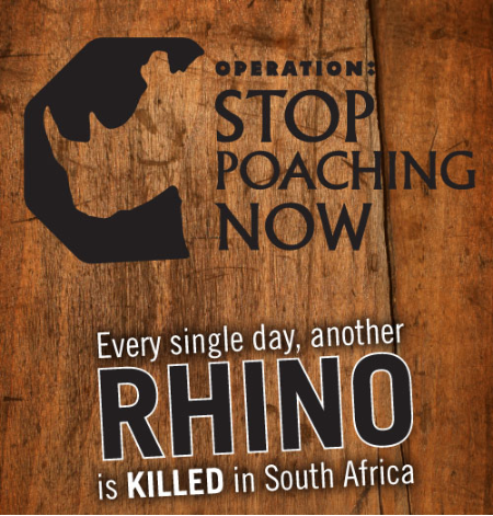 how i would stop poaching Rhino horn could be cut from live animals and sold legally to stop poaching, the bbc presenter and scientist adam hart has suggested.