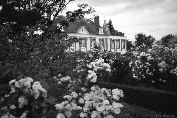 aliciasivert, Alicia Sivertsson, France, Normandy, Les Jardins d'Angelique, garden, gardens, flowers, house, roses, rose, Frankrike, Normandie, trädgårdar, trädgård, blommor, hus, rosor, ros