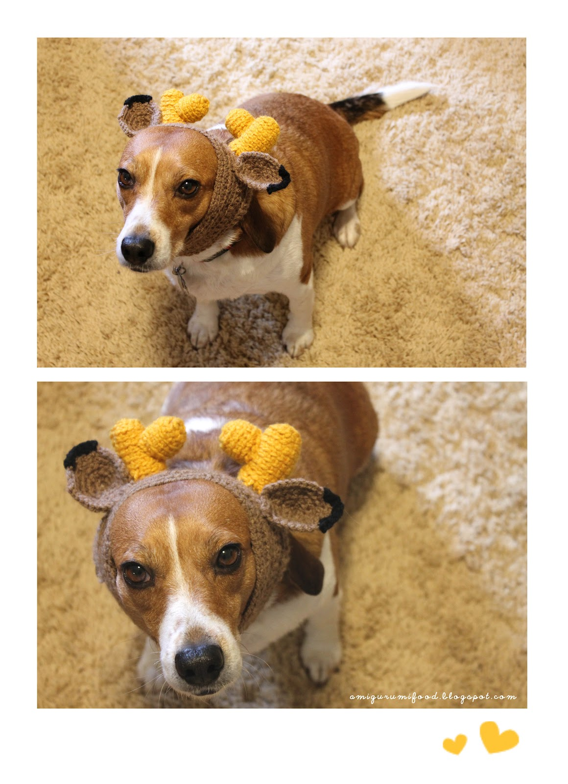 Free Crochet Dog Reindeer Hat Pattern : Amigurumi Food: Dog reindeer hat!! Happy Christmas!