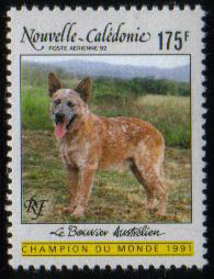 1991年ニューカレドニア オーストラリアン・キャトル・ドッグの切手