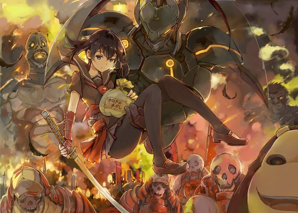 kurome anime wallpaper,akame ga kill wallpaper,anime wallpaper