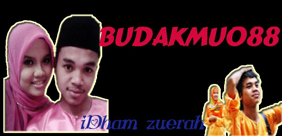 Idham_zuerah