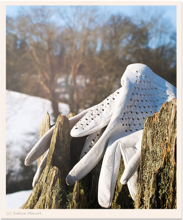 Psynopsis White Leather Gloves
